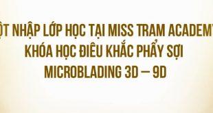 """lop hoc dieu khac chan may phay soi miss tram 310x165 - """"Đột Nhập"""" Lớp Điêu Khắc Chân Mày Phẩy Sợi Microblanding 3D-9D"""