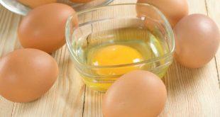 long do trung ga 310x165 - Mặt Nạ Lòng Đỏ Trứng Gà Mang Đến Hiệu Quả Gì Cho Làn Da?
