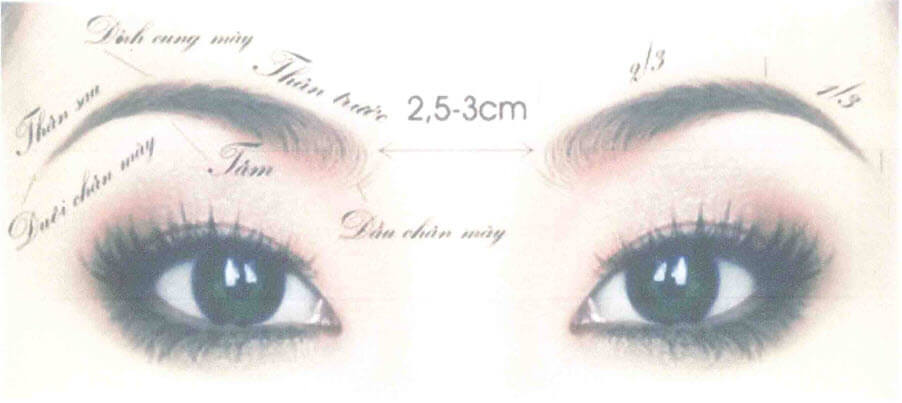 How to choose & draw eyebrows shape suitable for each face, skin color 2