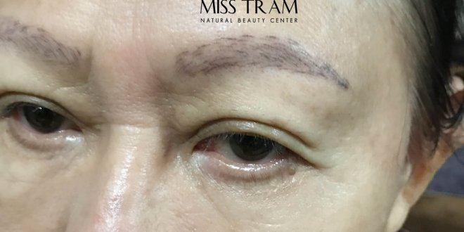 Repairing Damaged Eyebrows with Sculptures 9D Thread 1