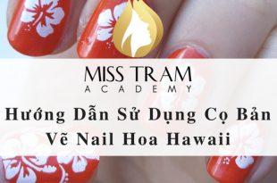 Hướng Dẫn Sử Dụng Cọ Bản Vẽ Nail Hoa Hawaii 4