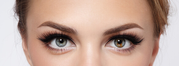 How to Make Eyebrow Spray Quickly Fluffy and Coloring Standard 2