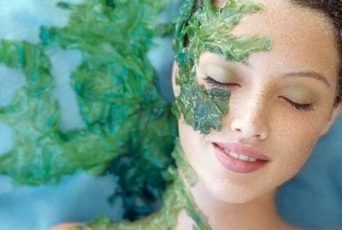 skin care skin care skin care cream - how to make seaweed mask for smooth skin