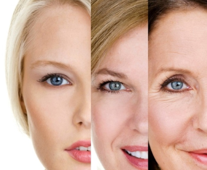 Skin Factors Affected by Which Factors 2
