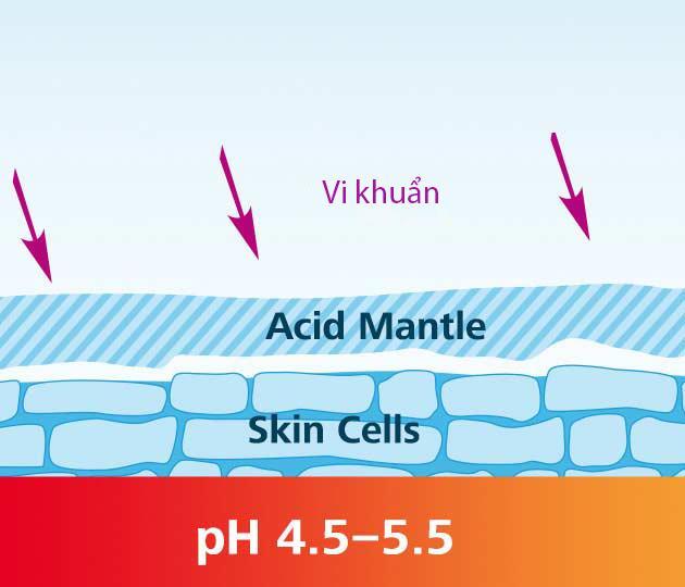 Hiểu Đúng Về Độ pH Của Da Và Cách Giữ Cân Bằng Cho Da 2