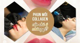 Những Vấn Đề Cần Chú Ý Khi Phun Môi Collagen 16