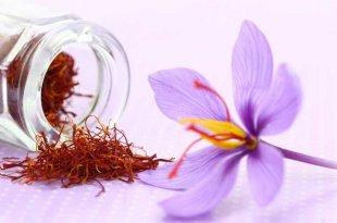 Saffron - Nguyên Liệu Làm Đẹp Tự Nhiên Các Spa Cần Có 19