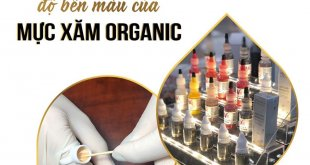 Factors Affecting the Color Fastness of Organic Tattoo Inks 3