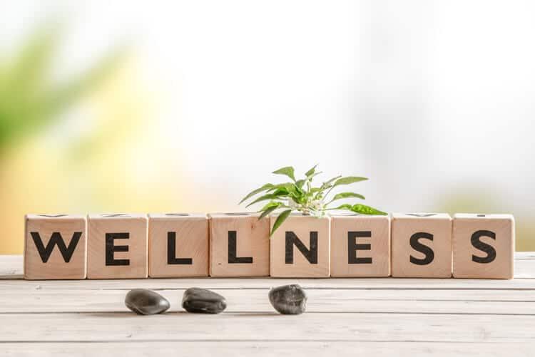 Wellness - Xu Hướng Được Quan Tâm Nhất Năm 2020 2